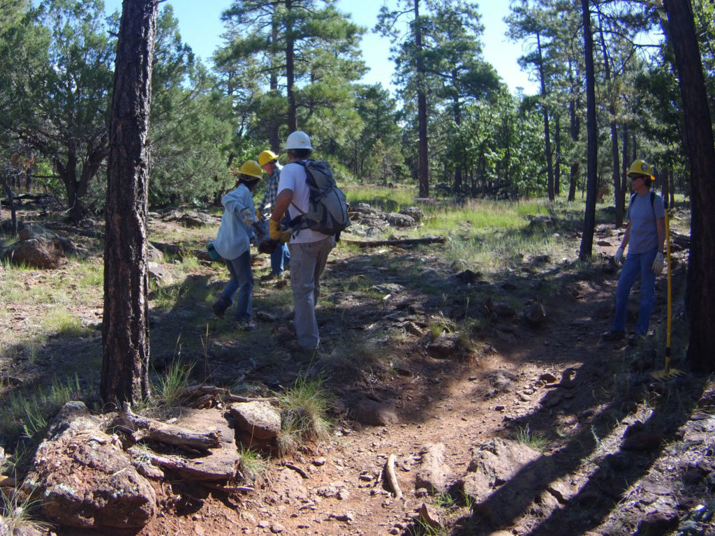 Trailwork on Crystal Point trail.