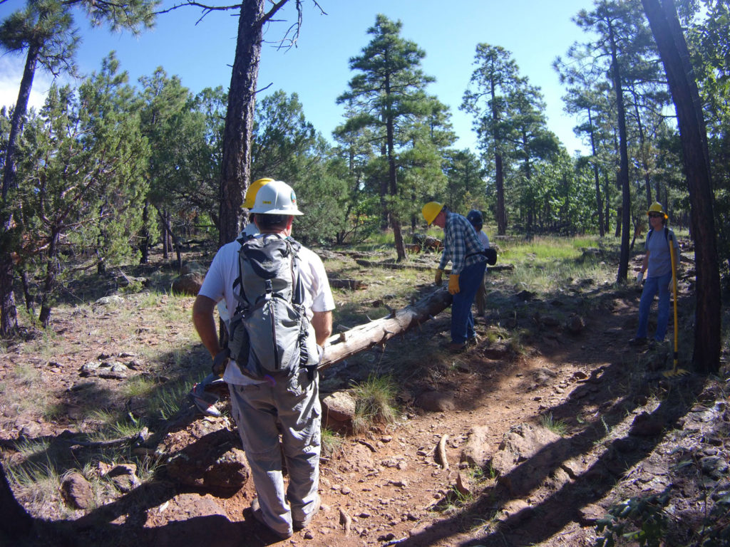 Trailwork along Crystal Point Trail