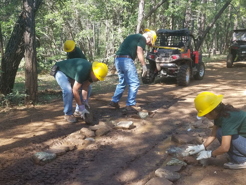 Adding rocks to correct a muddy area on Frog Tank connector trail