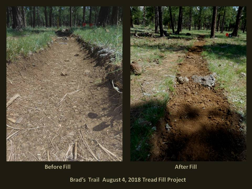 Brad's Trail Fill Project Before and After