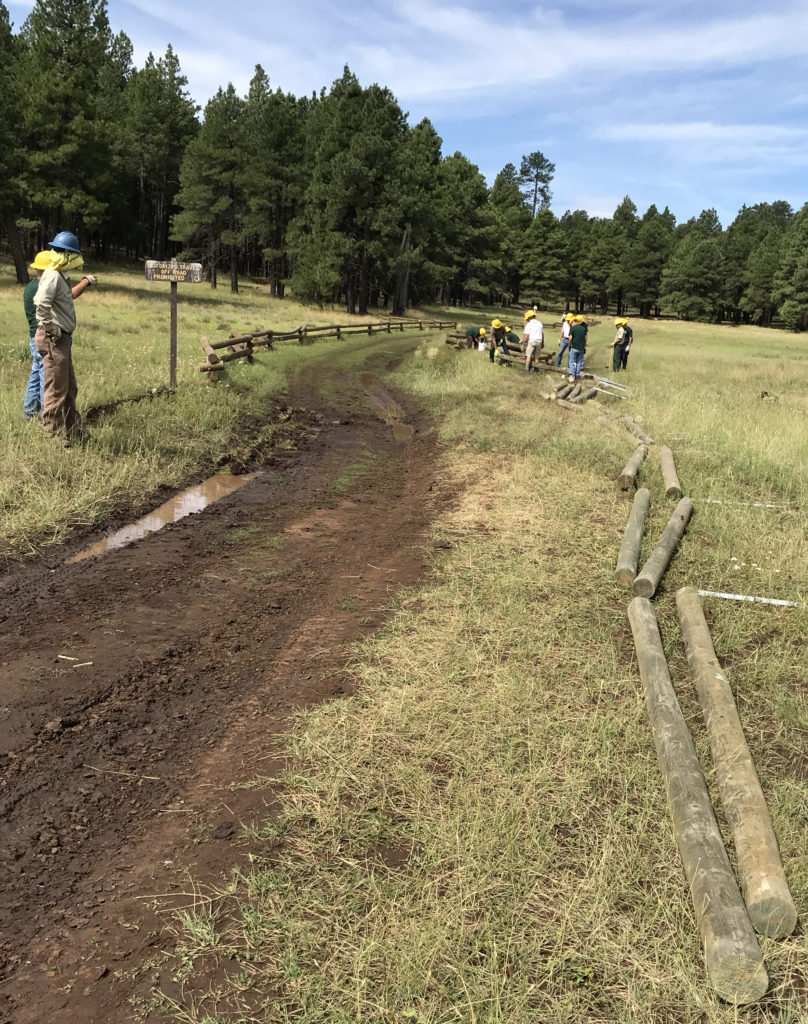 Horse Park Fencing before installation