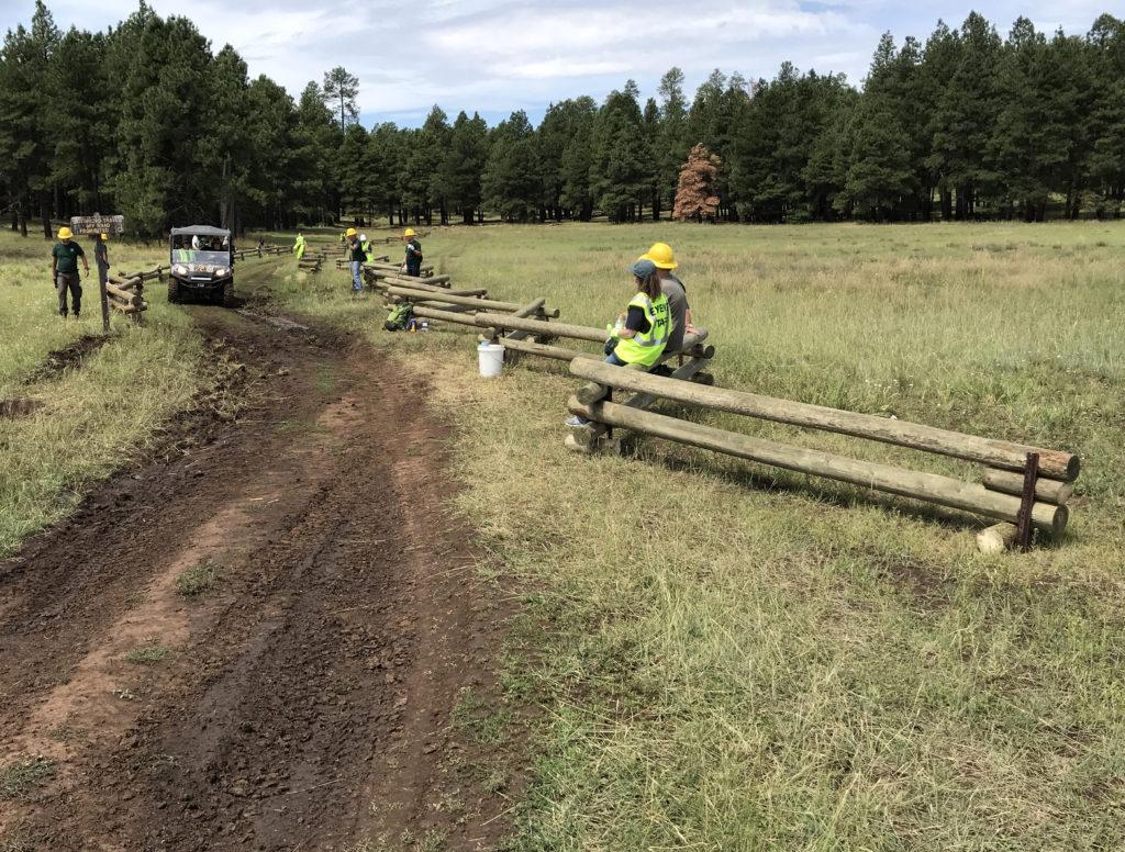Horse Park fence after installation