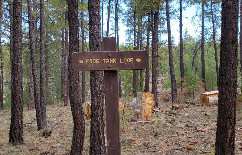 Frog Tank Loop Trail Sign
